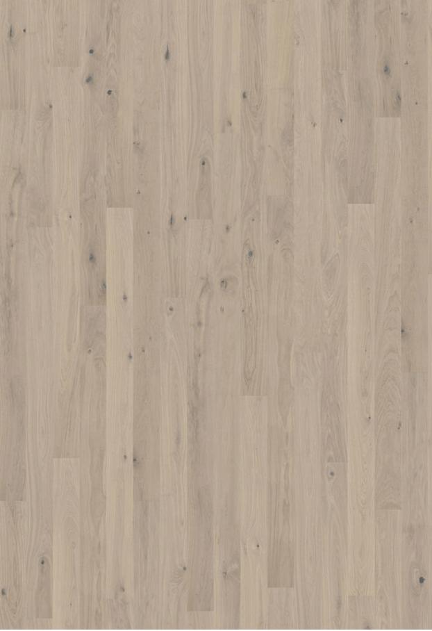 Oak Mostra Color Sample