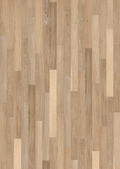 Sand Oak Sample